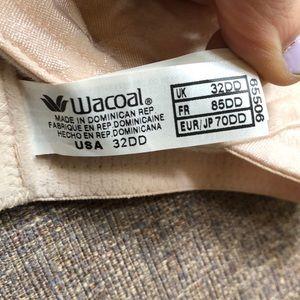 Wacoal Intimates & Sleepwear - Underwire Bra